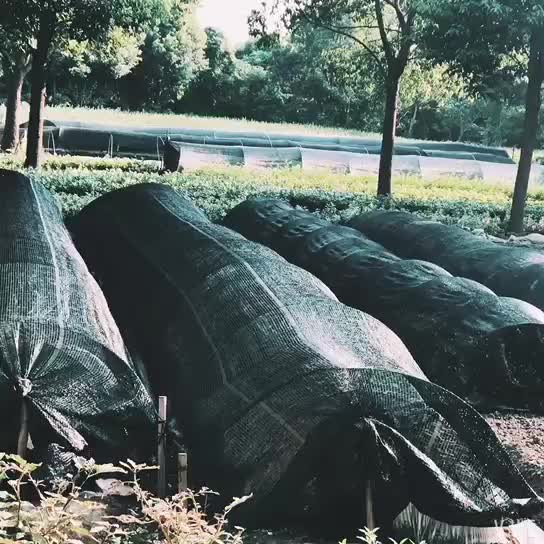 Agricultural greenhouse HDPE add UV sun shade cloth net per meter in Philippines market with high quality