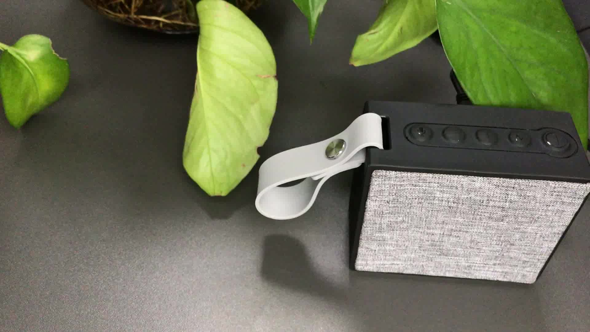 Eson estilo X9s Alexa altavoz inalámbrico controlado por voz altavoz IP67