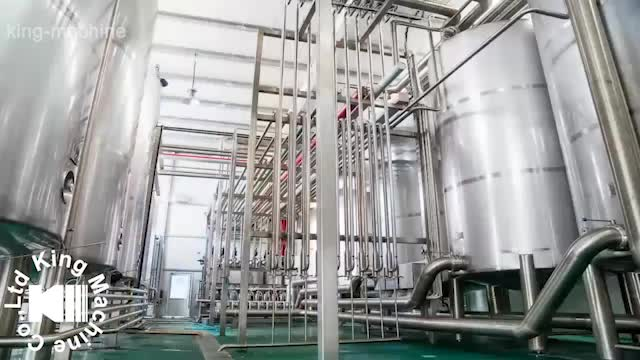 PET / glass bottle orange / mango juice production line