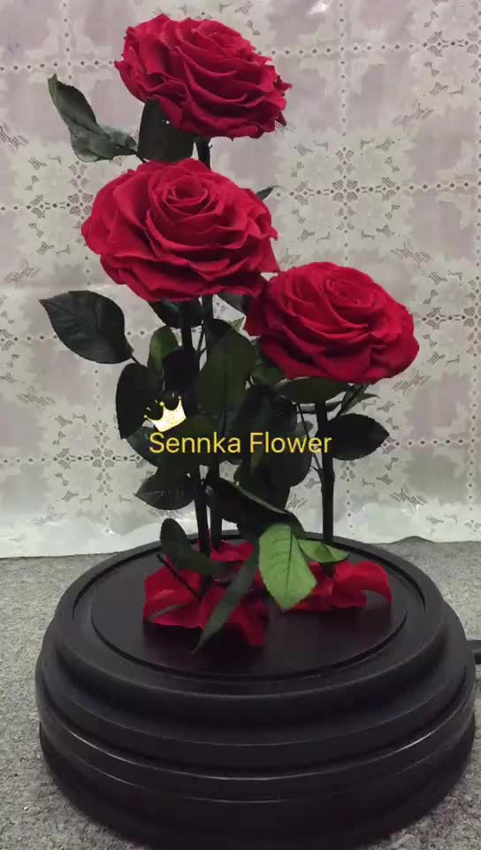 Whole Purple Color Preserved Rose Eternal Flower In Gl Dome S