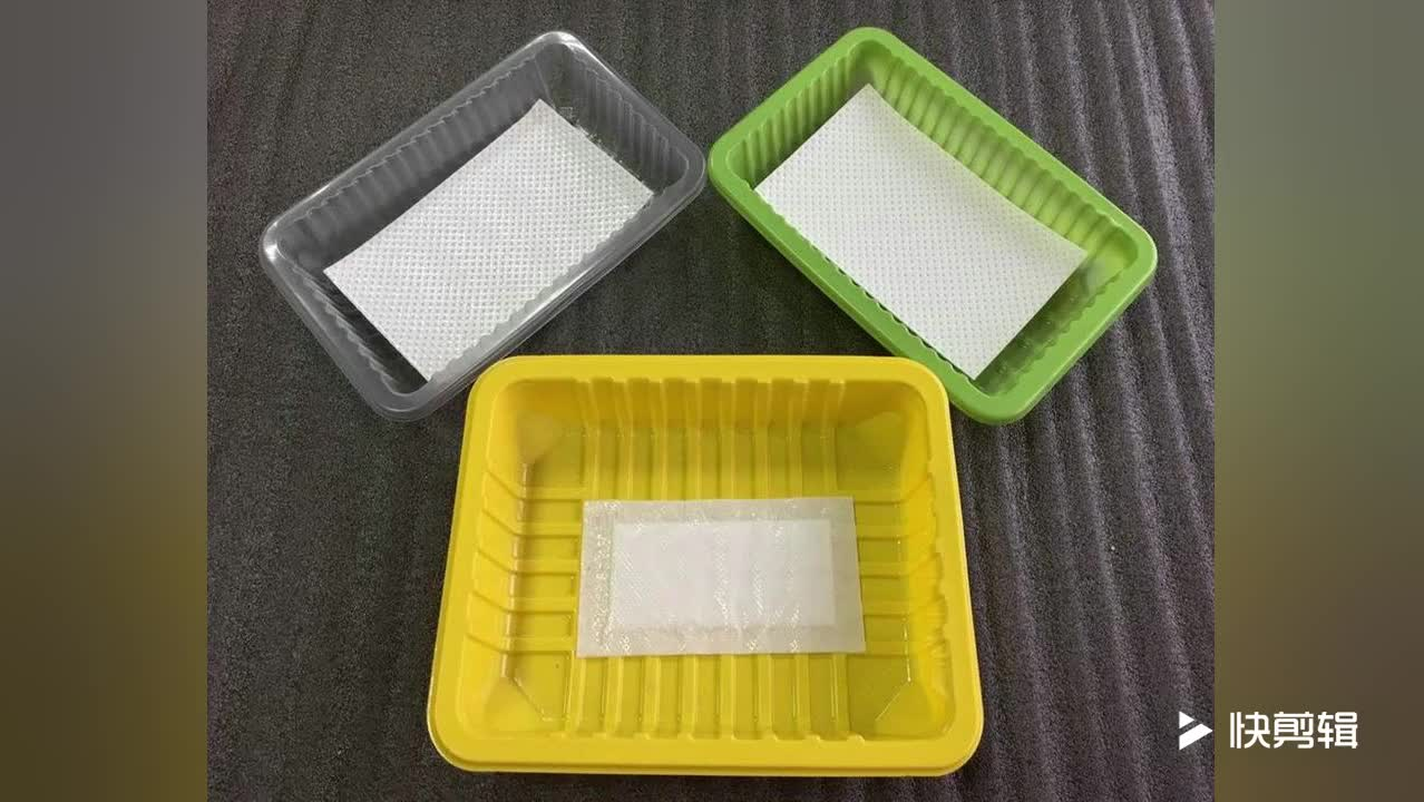 Size Custom Made Plastic Vacuum Forming Fresh Poultry Meat Packing Plastic Disposable Food Container