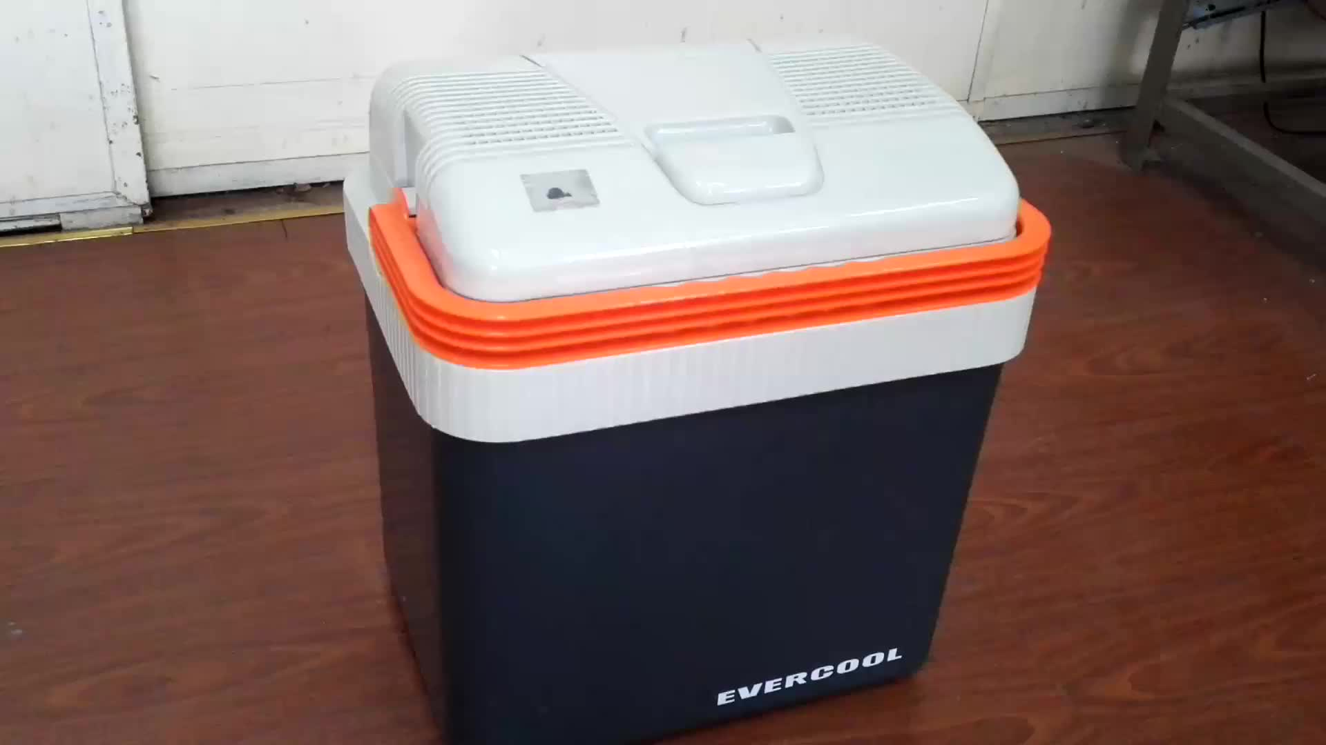 mini car fridge refrigerator thermoelectric cooler warmer box DC 12V for travel 24L ErP class A