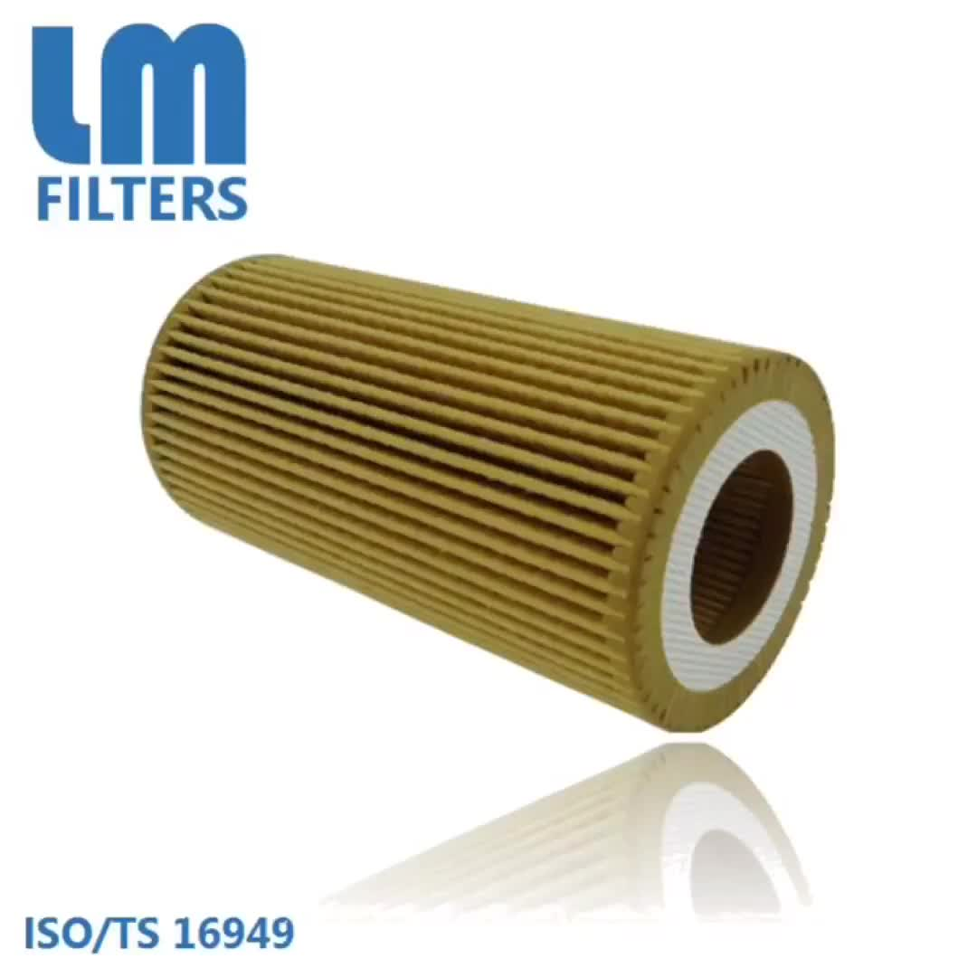 06D115466,06D115562 Oil Filter Cross Reference