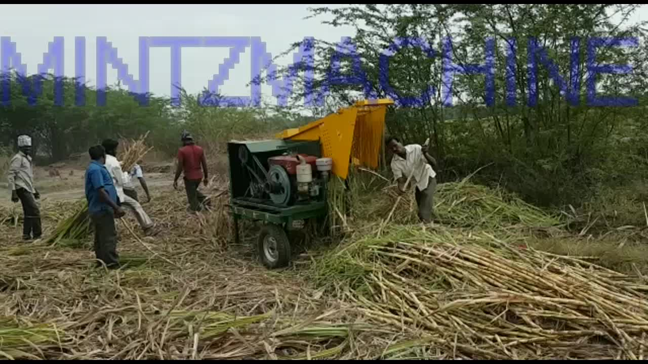 cheap sugarcane leaf remover for asian country