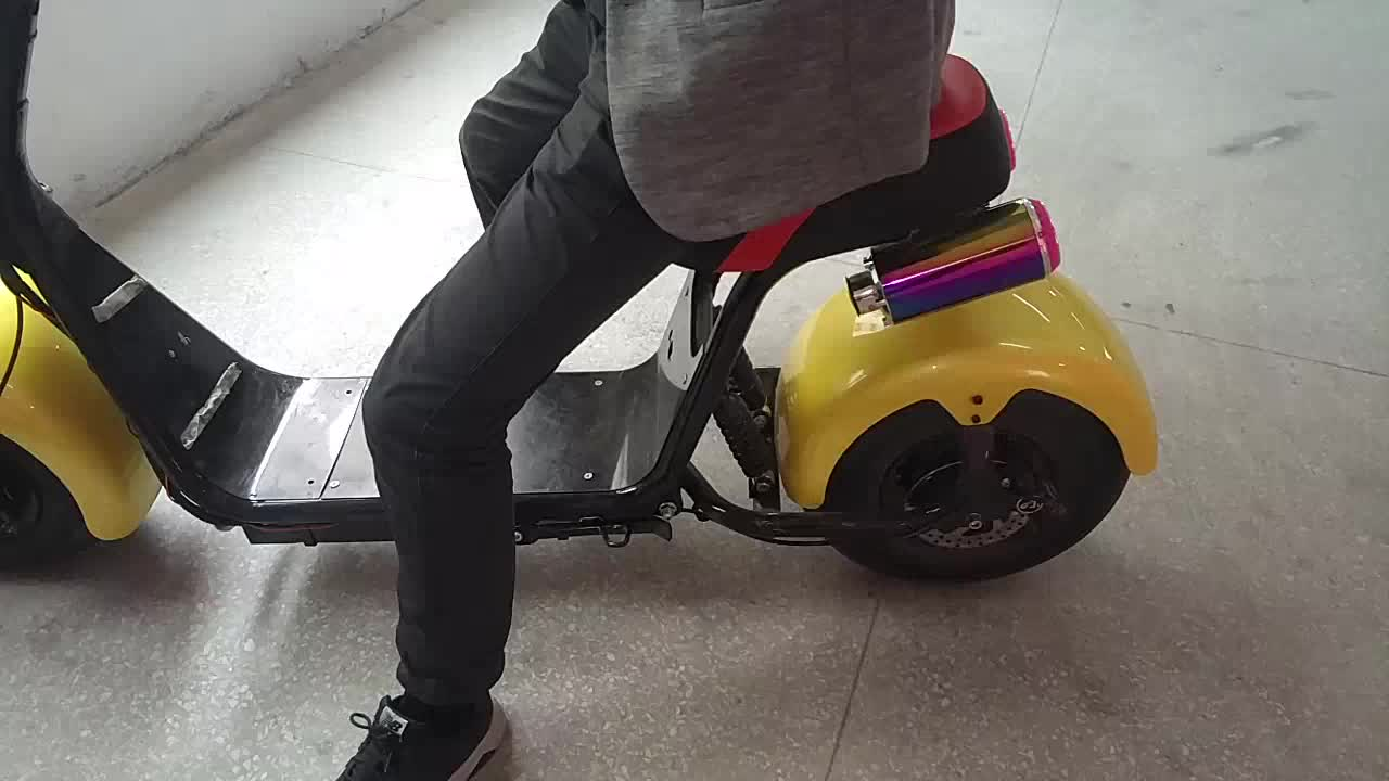 Fat Tire Halley Electric Scooter With Front And Tail