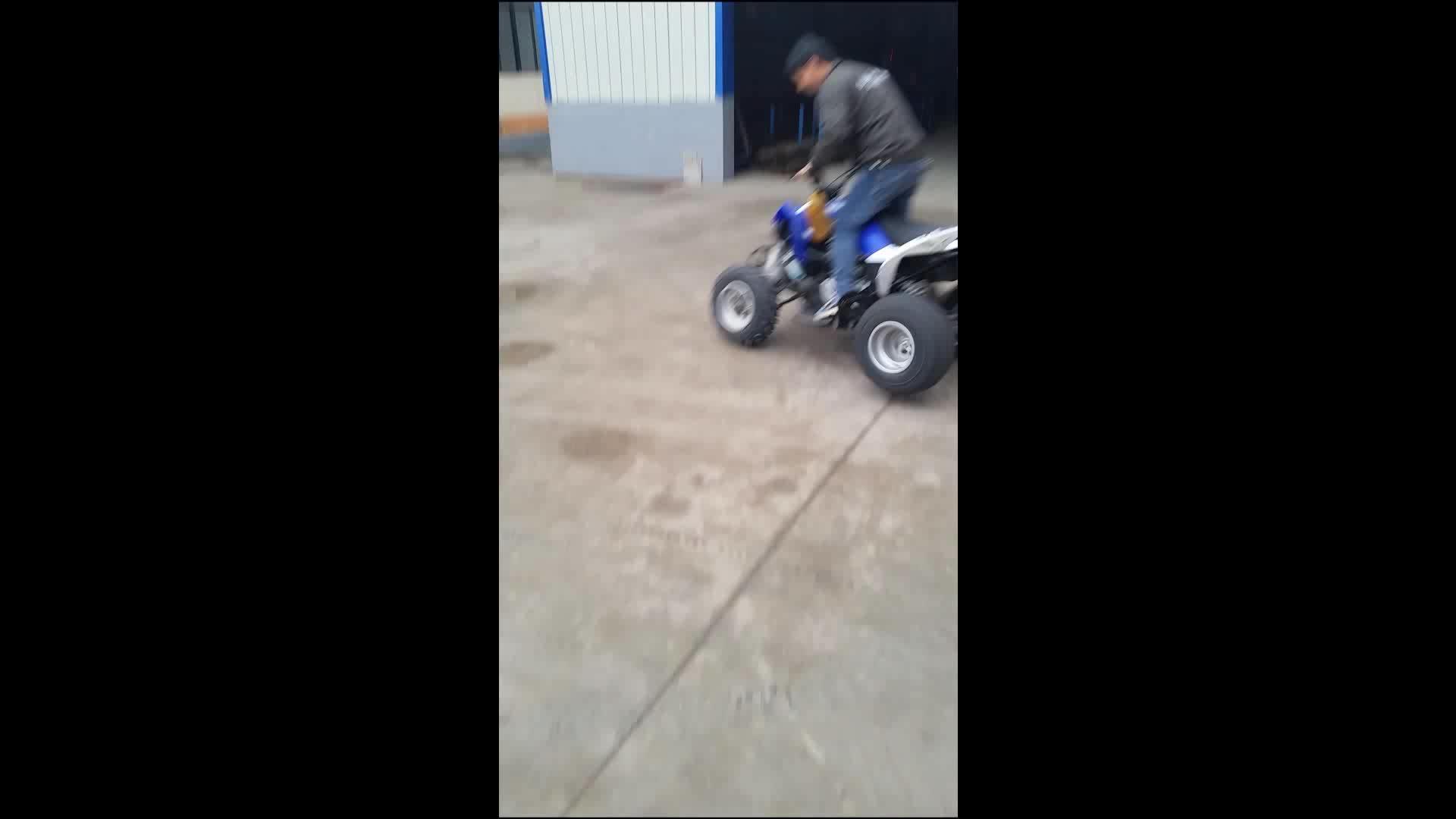 Top Performance Raptor ATV 250cc