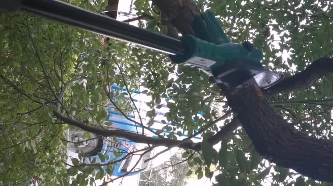 Extentool 2018 Yeni budama aletleri ile kadınlar için bahçe elektrikli makası için pilli