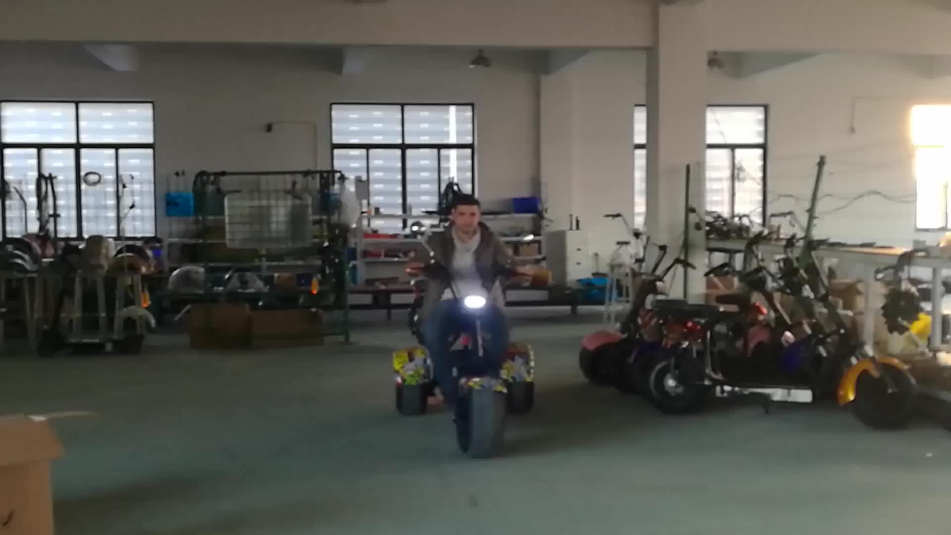 Elétrica 3 roda Scooter Elétrico cidade coco 800 w 1000 w seev citycoco 2000 w scooter elétrico com gordura de pneus de bicicleta