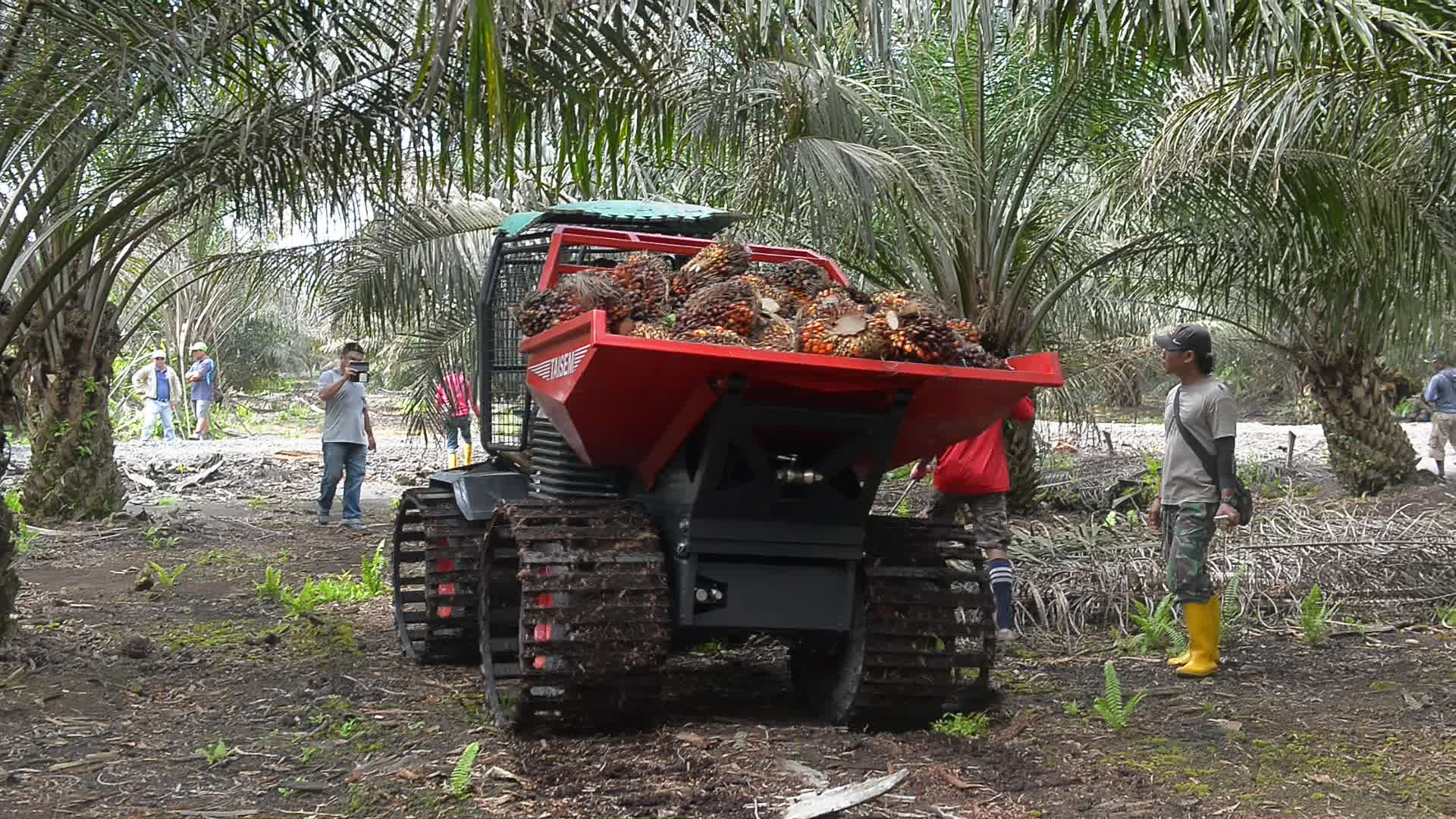 palm oil plantation tractor 4x4 all road farm small agriculture machinery buy palm oil. Black Bedroom Furniture Sets. Home Design Ideas