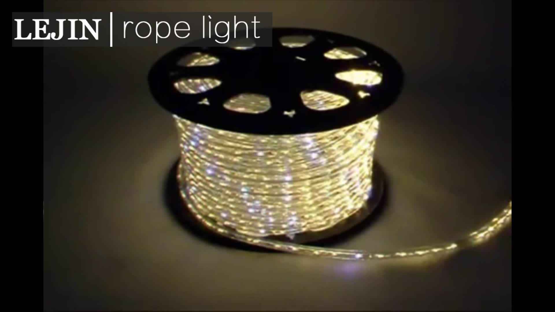 Wholesale led d train christmas rope light made in china