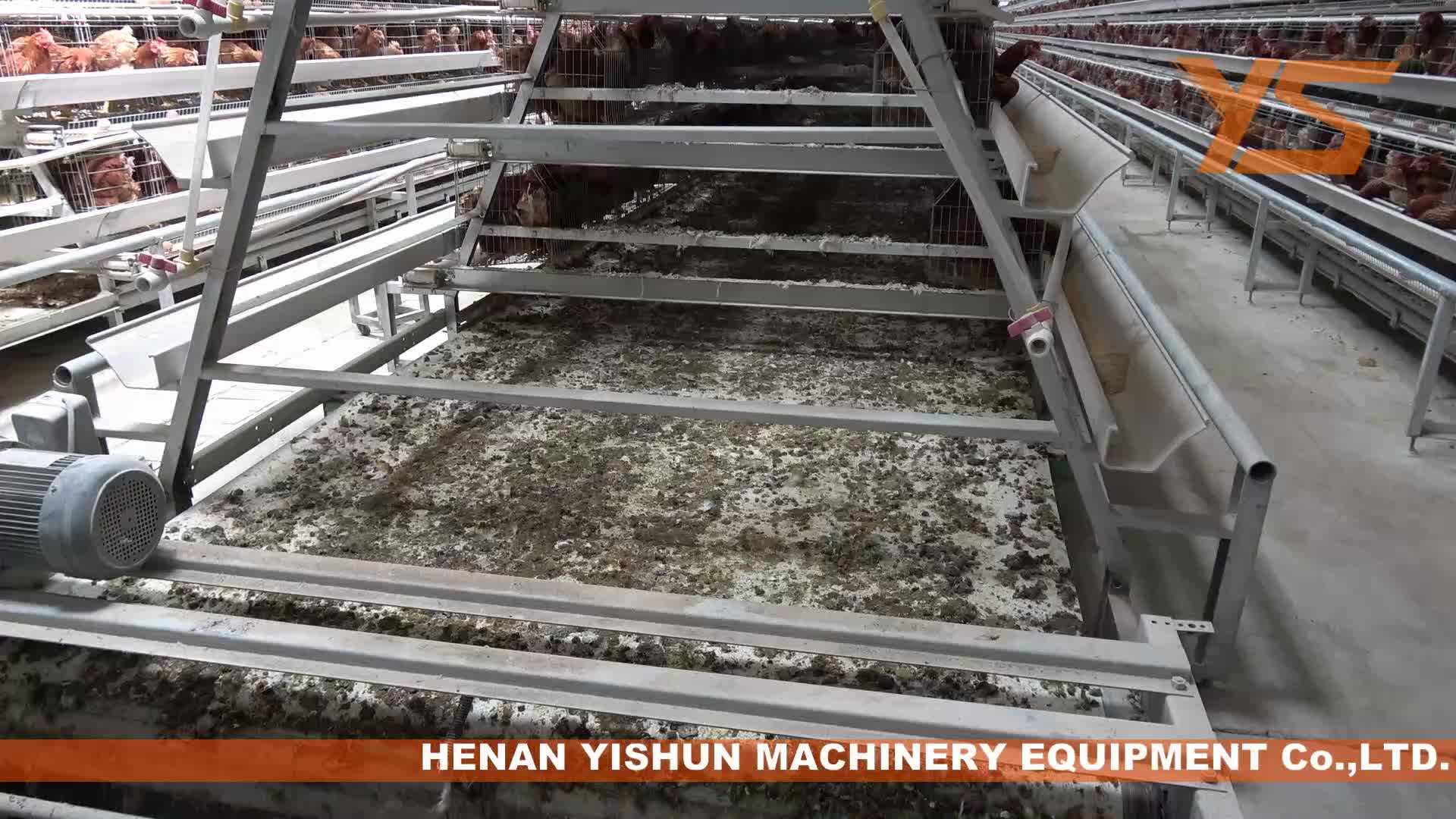 Best Design A Type Automatic Chicken Broiler Cage