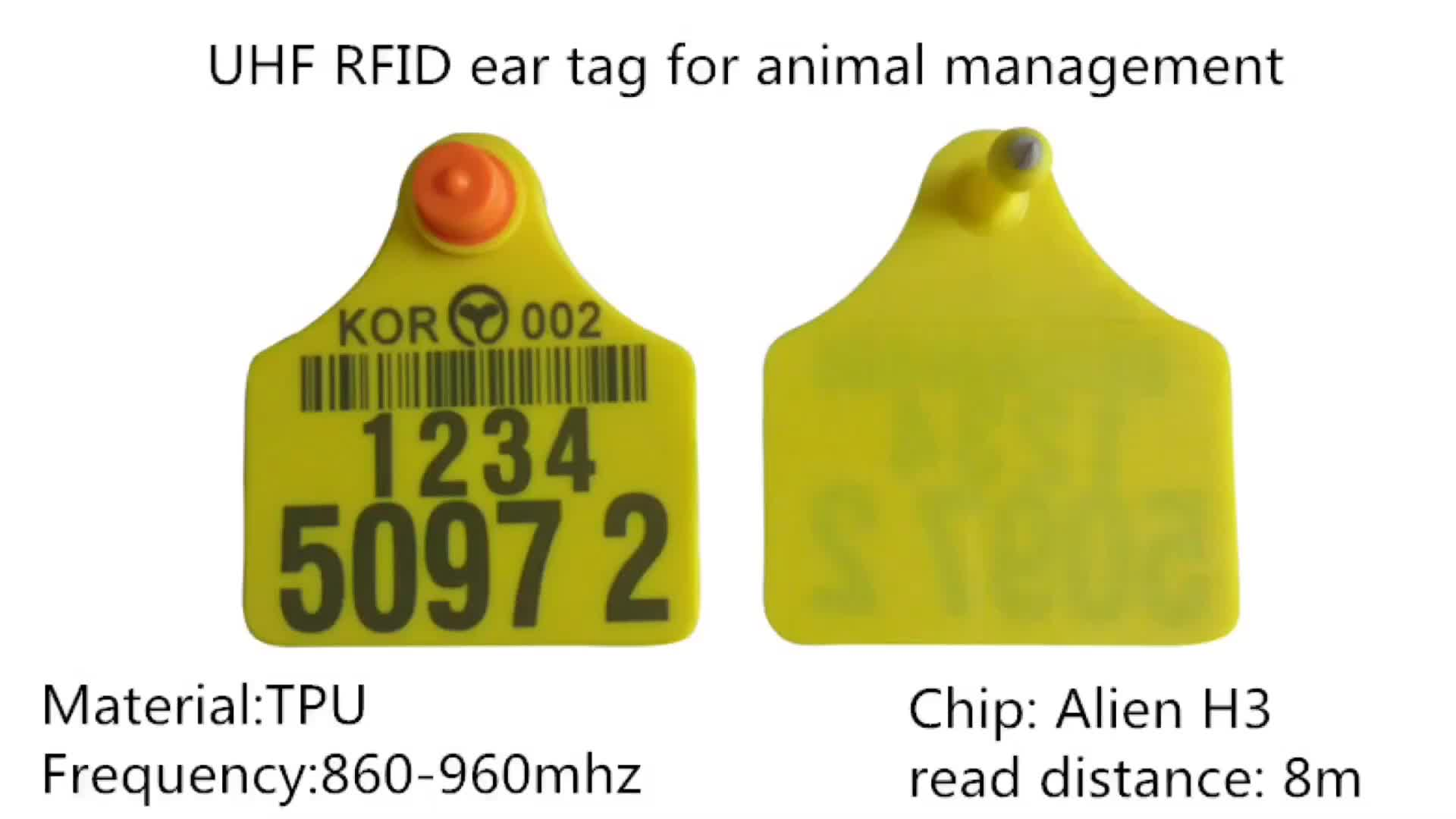 Animal harmless Dia 30mm TPU disposable 134.2khz rfid animal ear tag em4305 rfid cow cattle for tracking system