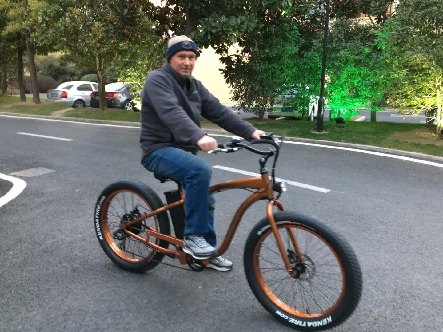 Electric Fat Bicycle