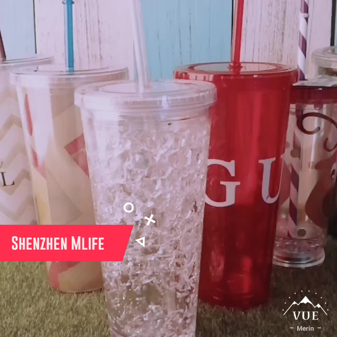 Classic Insulated 16oz BPA FREE Double Wall Straw Tumbler Cup With Lid