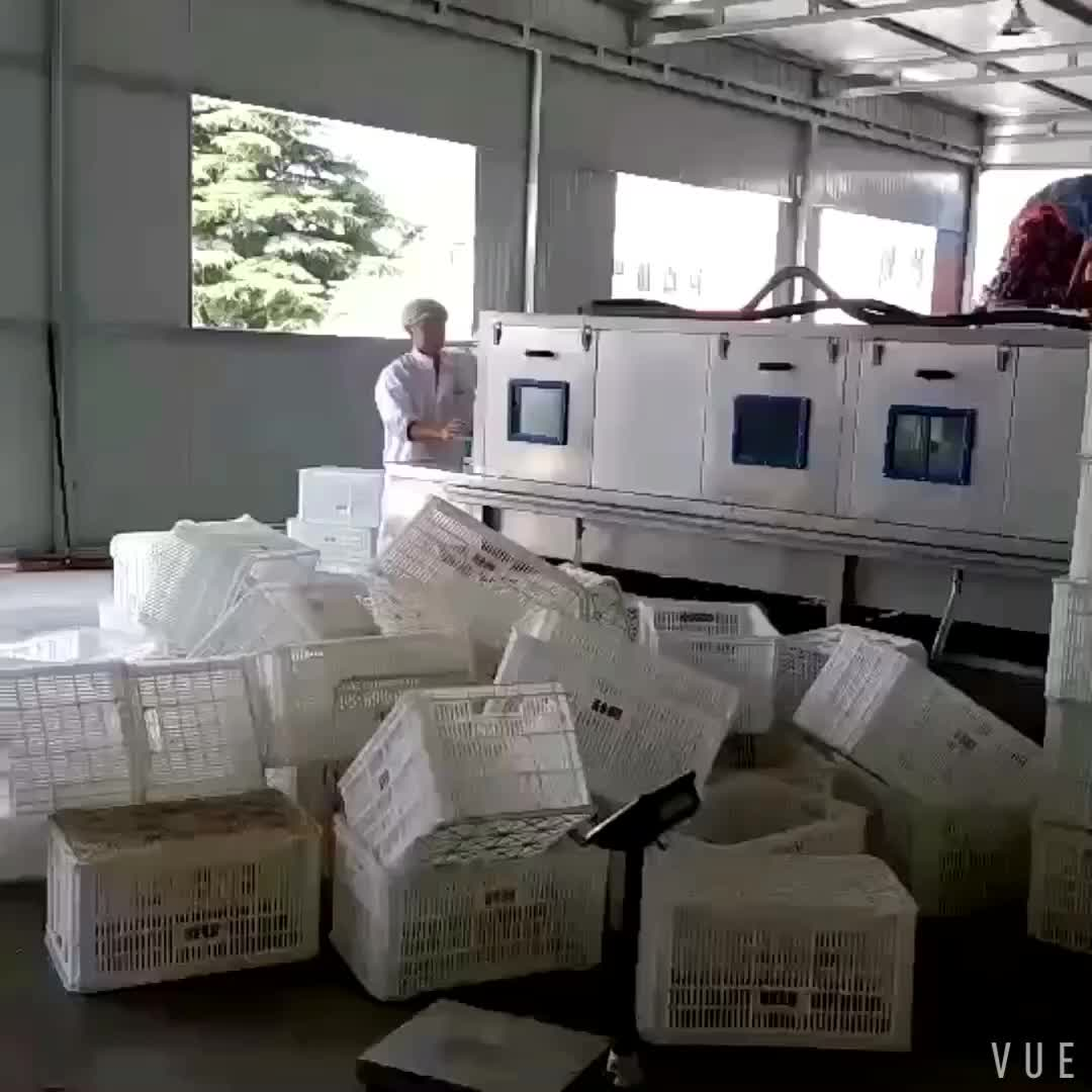 Completa de acero inoxidable 304 de alta calidad de plástico cesta facturación Lavadora/cubo de plástico lavadora