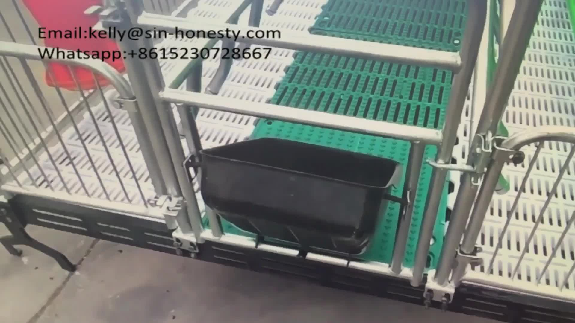 Pig Equipment Farrowing Crate For Sow