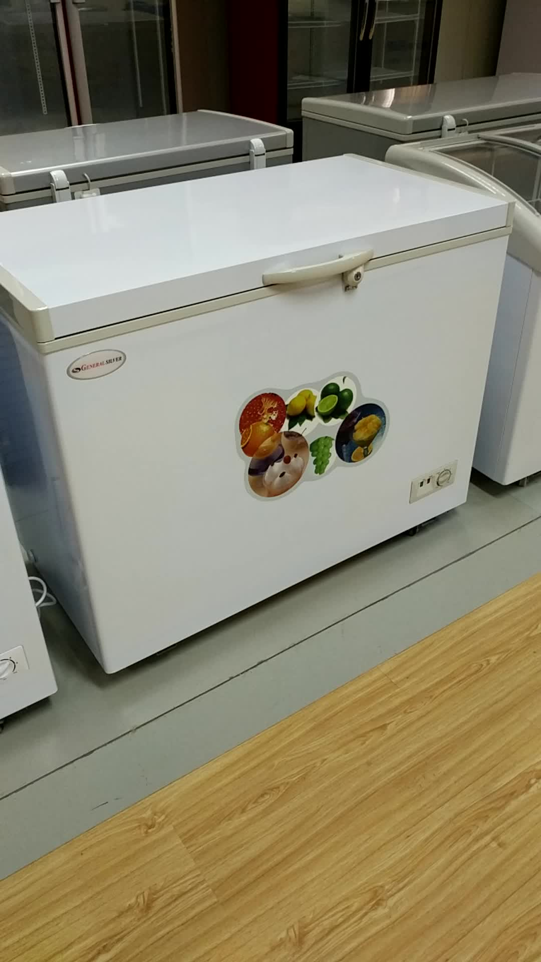 Bd 230 Single Temperature Deep Chest Freezer 230l Ice Cream Chiller