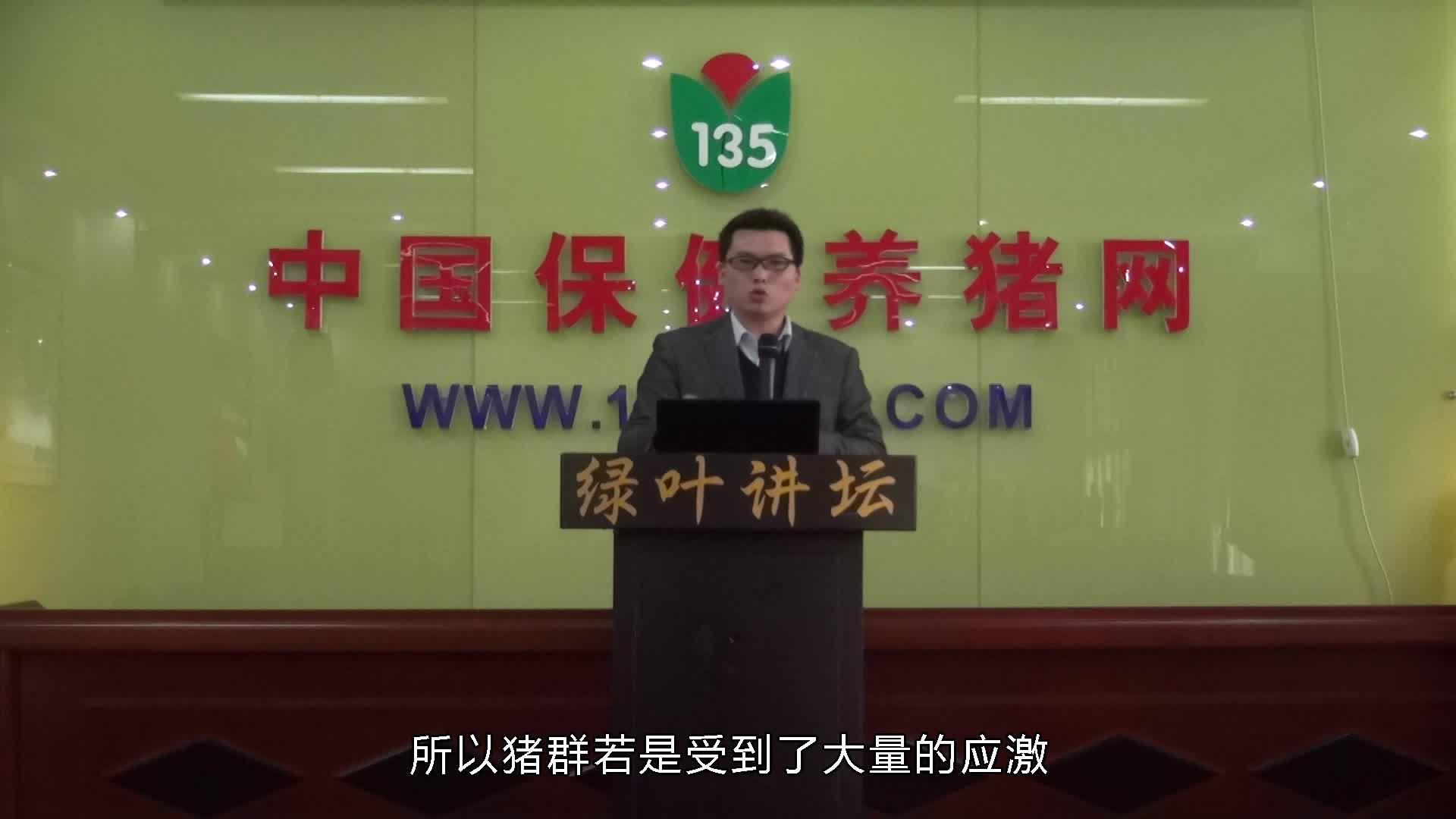 视频:保健养猪技术讲座(王国强)