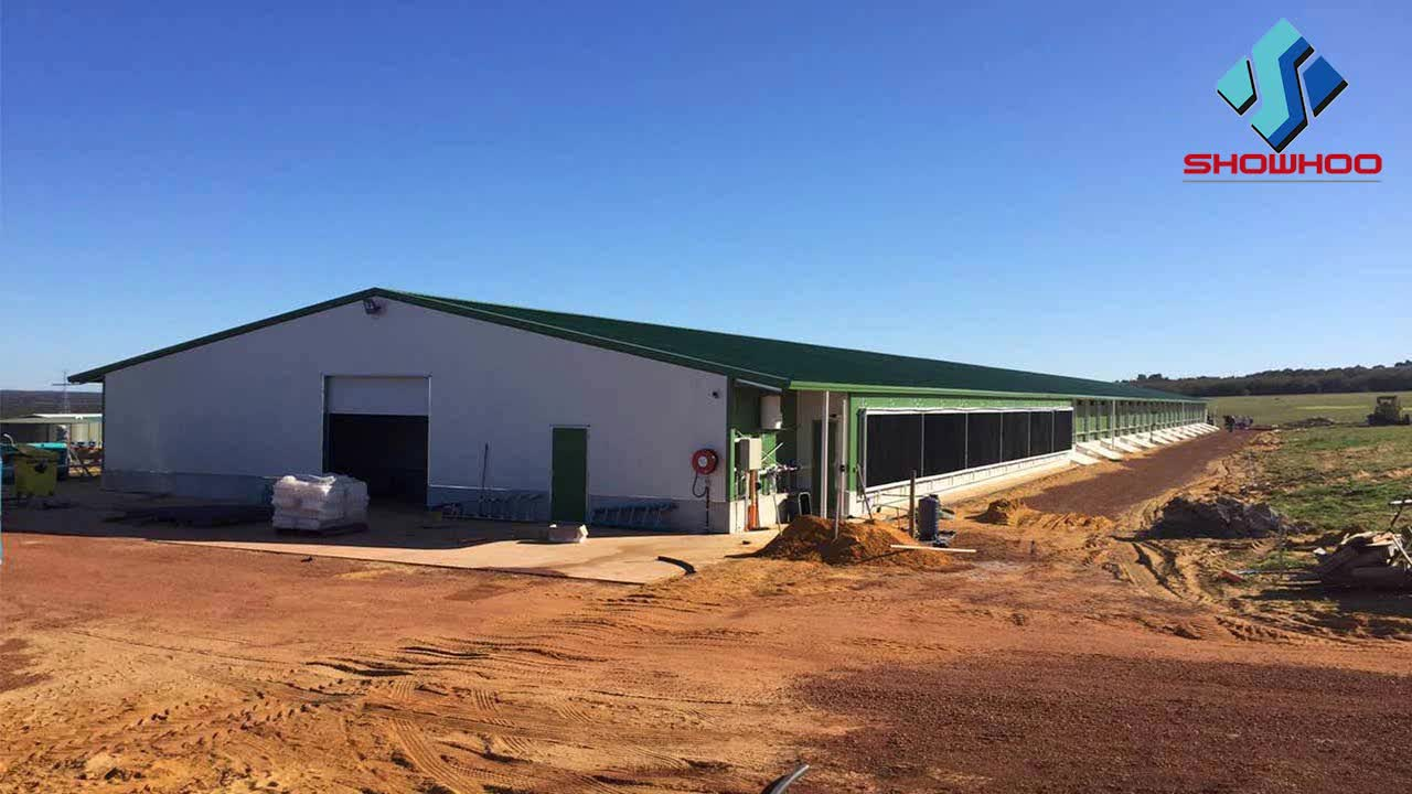Low cost industrial shed steel structure building design for Farm house construction