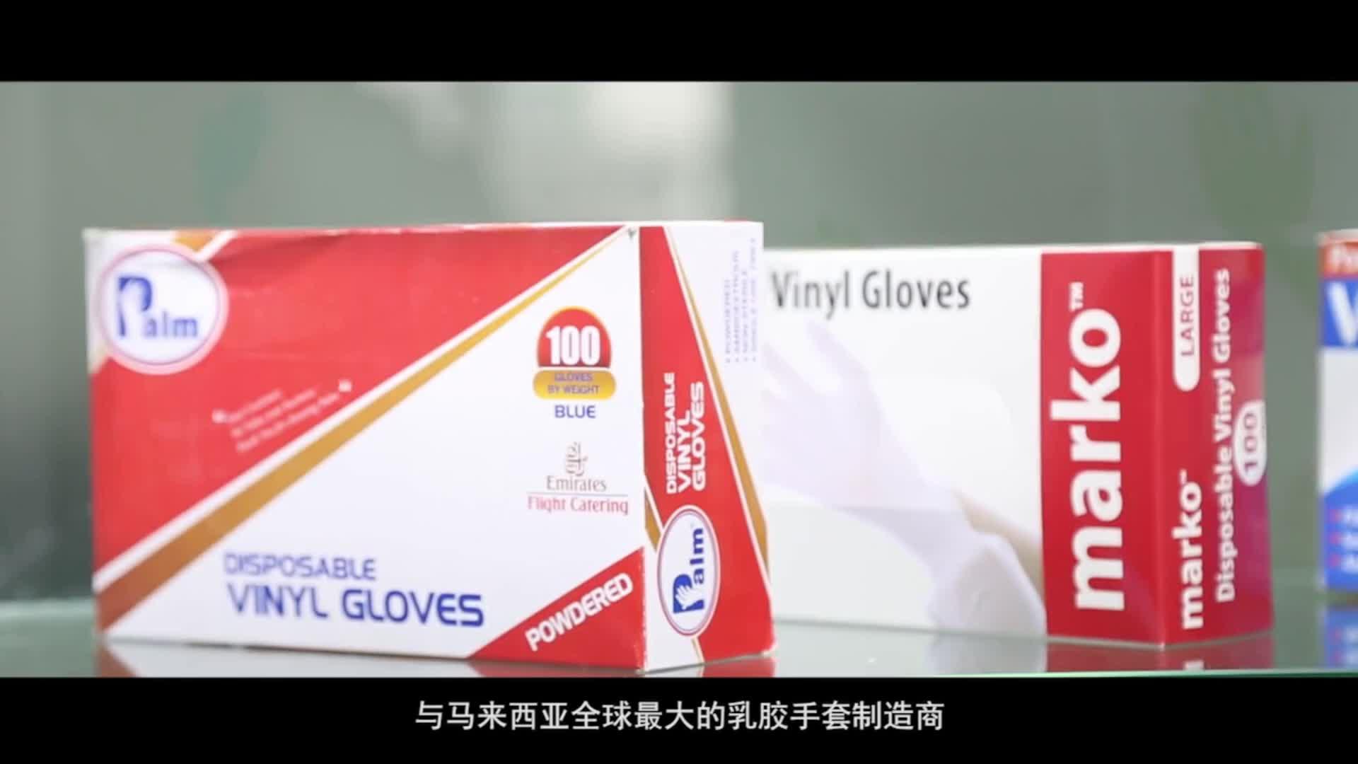 Cheap disposable powder free vinyl examination gloves