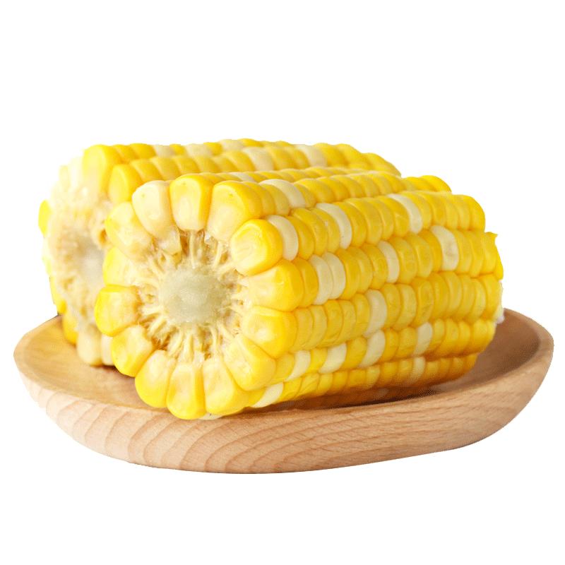 甘肃新鲜甜水果熟玉米非转基因熟玉米真空包装共发8根