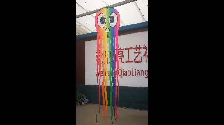 Top quality logo printed promotional weifang new customed factory flying kite
