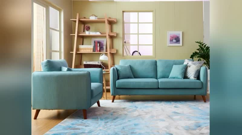 Reddeboo Light Weight Disassembly Upholstery Fabric Sofa