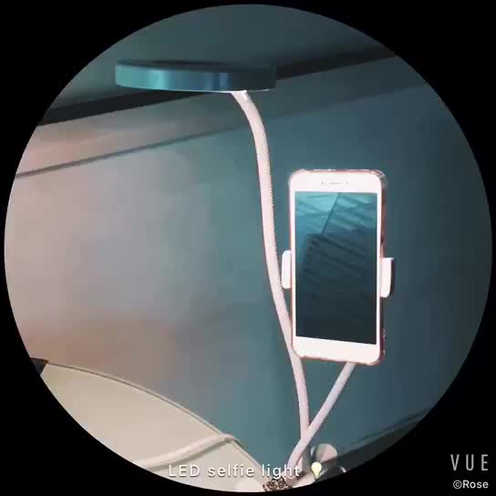 2 in 1 Live Broadcast 3-Level Brightness Selfie LED Light with Stand and Phone Holder
