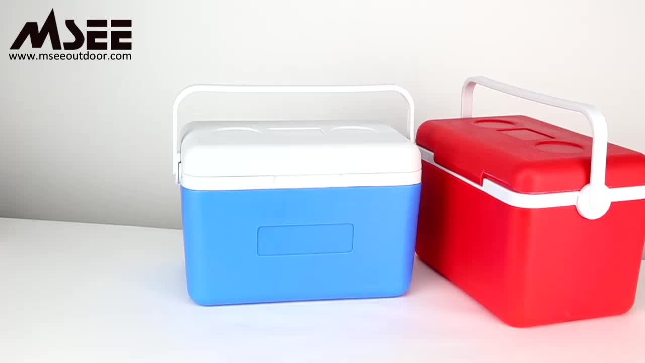 Iniection molding cooler box msee design Supermarket Travel trolley cooler box