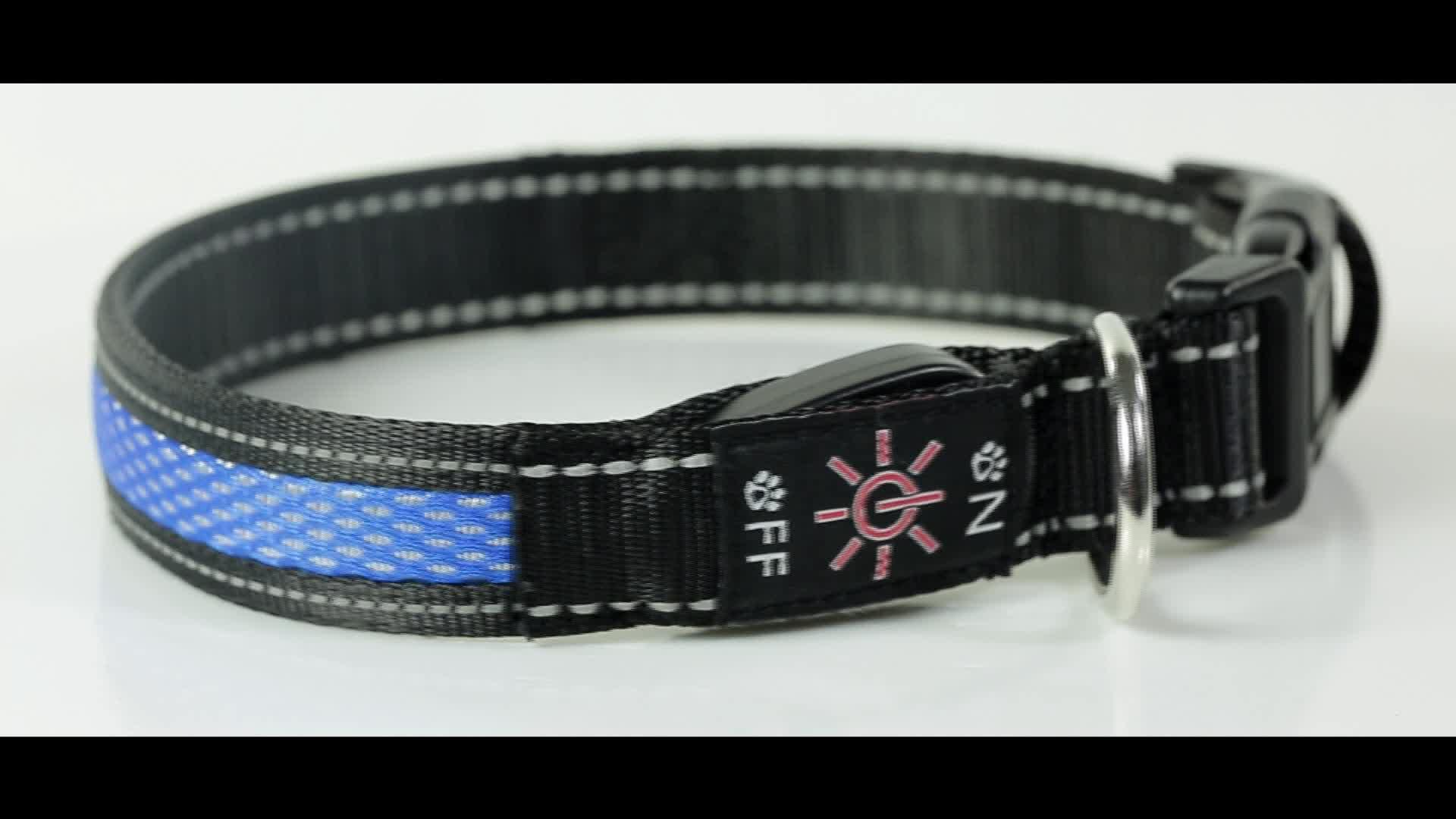 Wholesale Polyester Webbing Fashioned Illuminated Remarkable Security Led Dog Collar