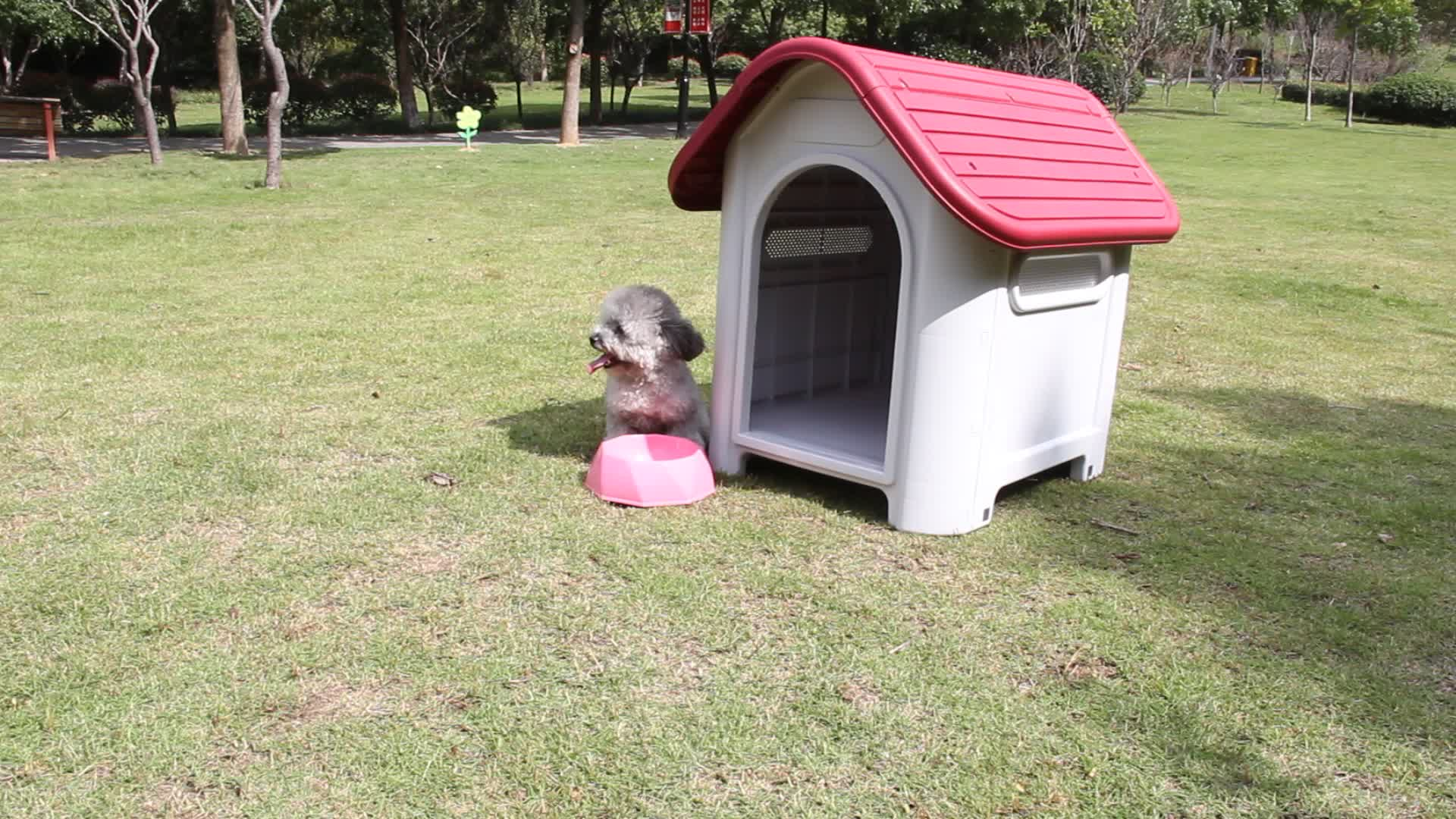 Outdoor Winter Cheap Dog Houses Large Cat Cages Pet Nest