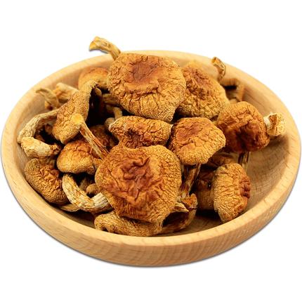 北域珍奇东北野生榛蘑菇特产蘑菇丁