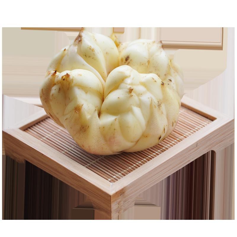 【大果 买2份送半斤】 储山 大别山新鲜食用百合500g 苦百合蔬菜