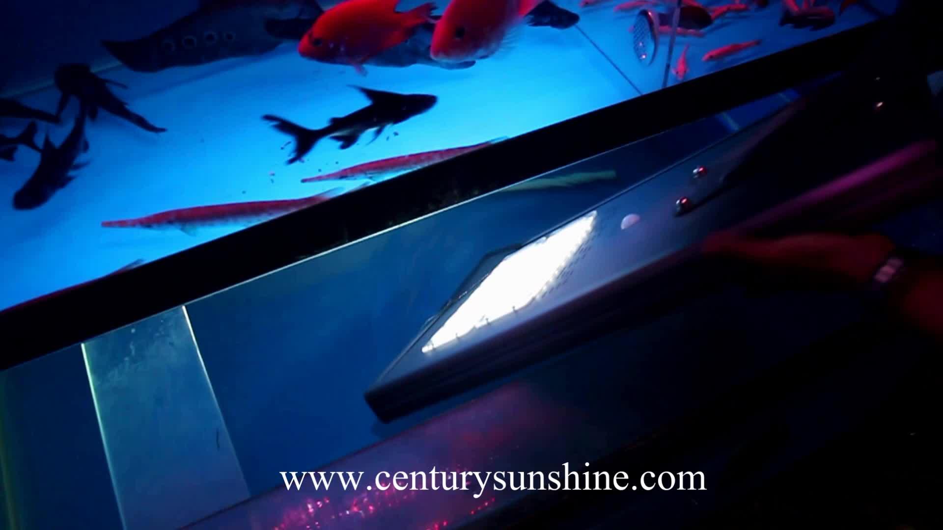 8 years manufacturer 4000lm luminaria solar led