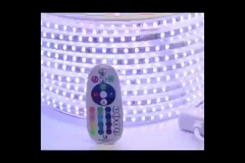 AC 110V 220V 7-10 重量/容積防水柔軟な Rgb/ウォームホワイト SMD5050 LED ストリップライトリモコン