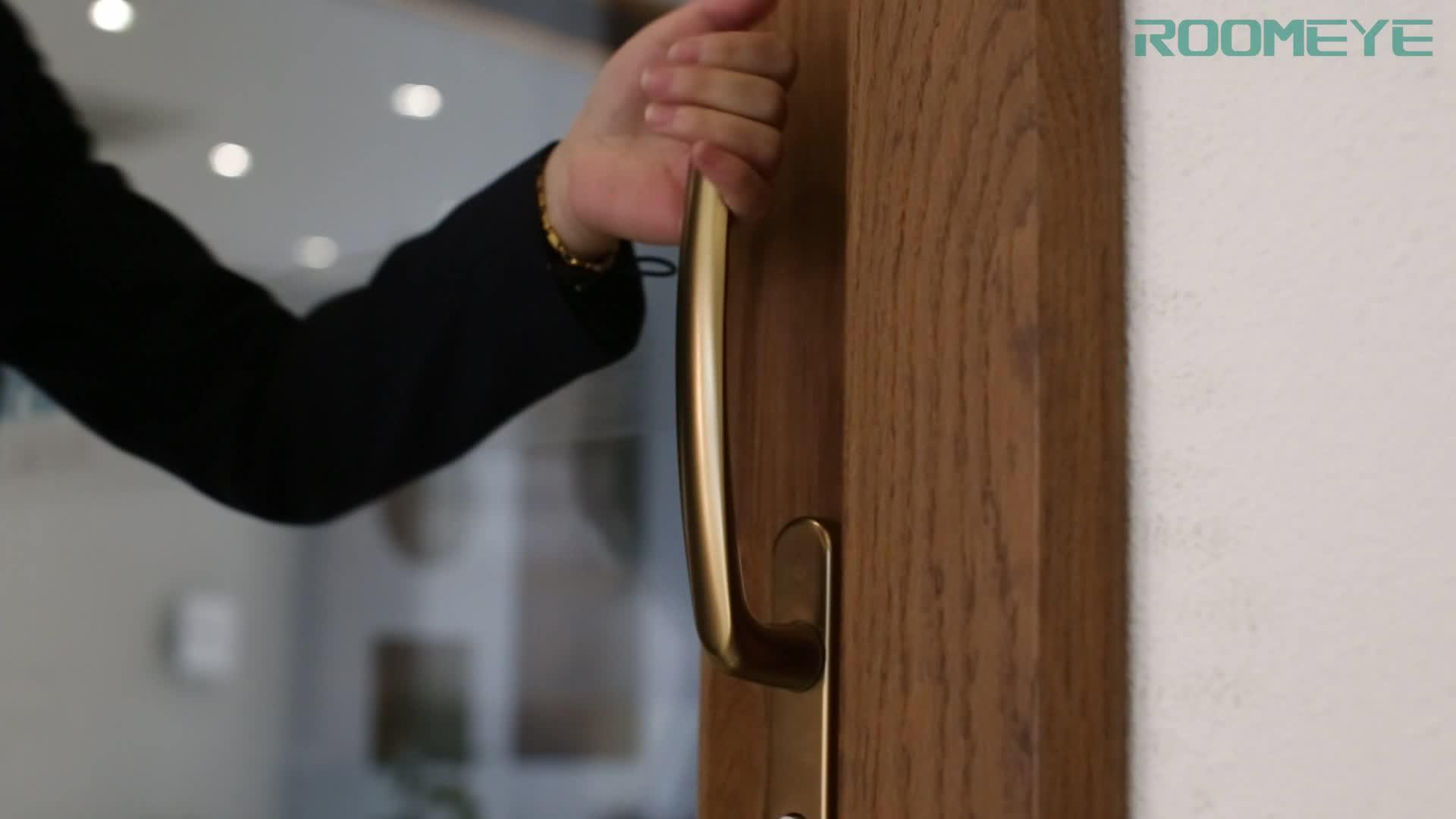 लकड़ी एल्यूमीनियम डबल घुटा हुआ बालकनी रपट कांच दरवाजा