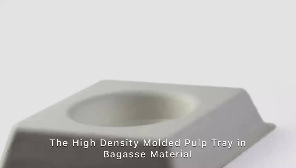 Disposable Molded Paper Pulp Packaging