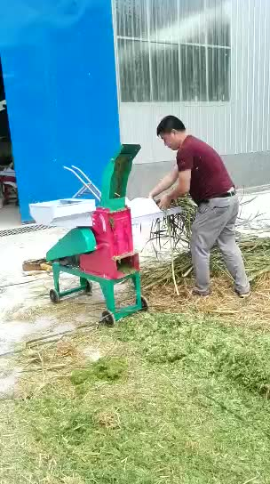 Straw animal feed crusher