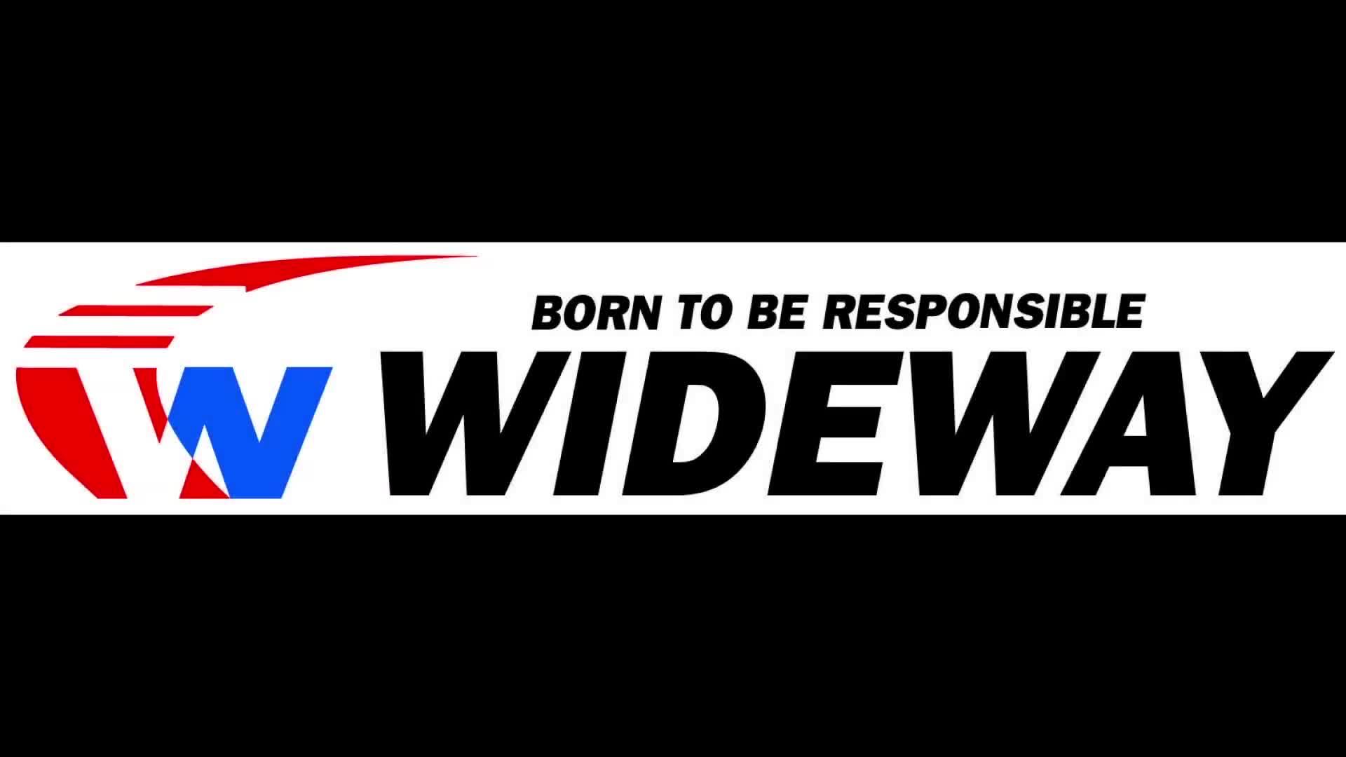 Wideway إطارات سيارات الركوب 195r14c مع ECE ، دول مجلس التعاون الخليجي ، DOT ، REACH ، تسمية الاتحاد الأوروبي