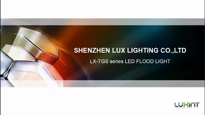 TGS Series 10W to 100w floodlights with PIR Sensor High Quality Brand Driver and Brand Light Source led floodlight 30W