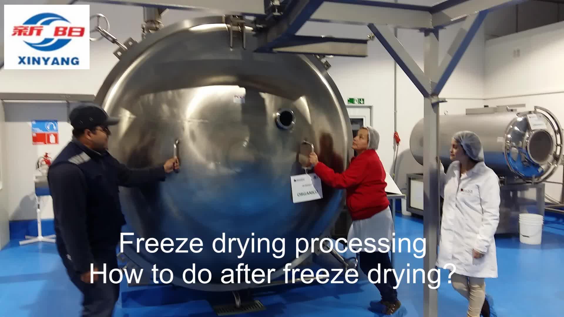 Liofilization רציפה מכונה מייבש הקפאת ואקום