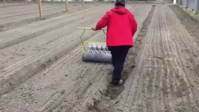 Vegetable seed sowing machine 6 row Jang push seeder for sale