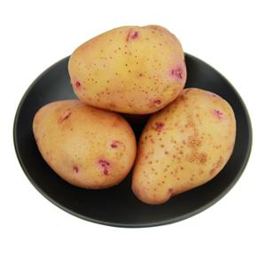 新鲜小土豆10斤农家自种黄心马铃薯