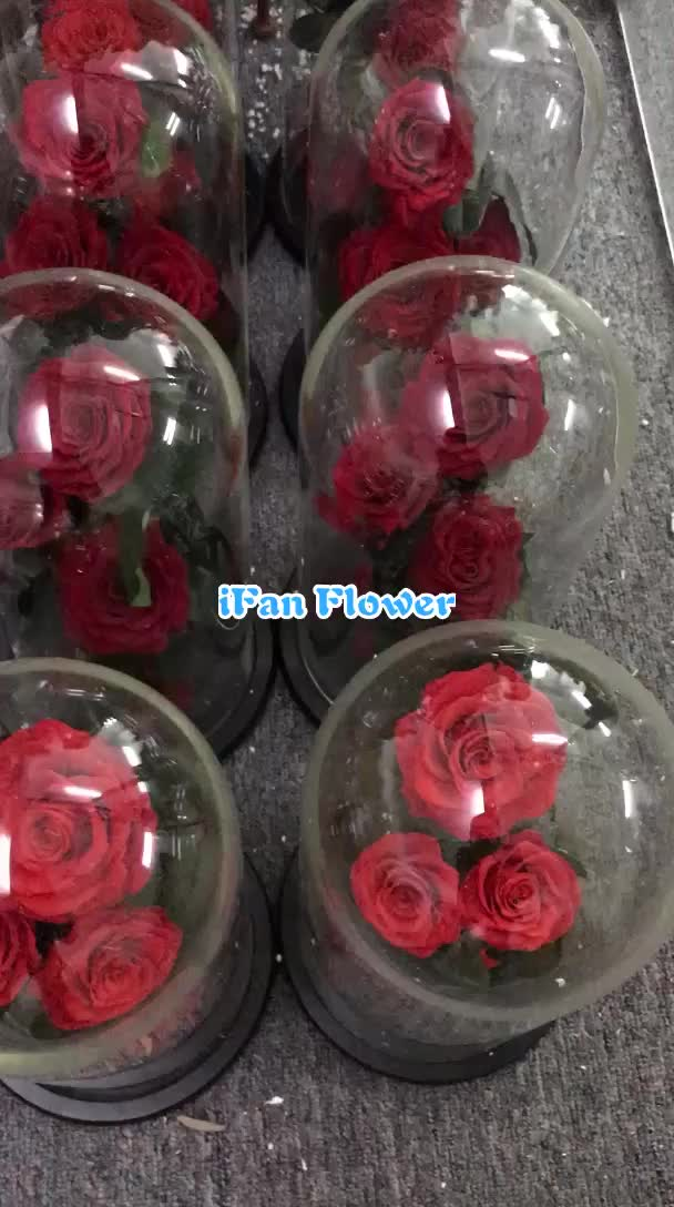 wholesale eternal flower preserved 3 red roses in glass dome