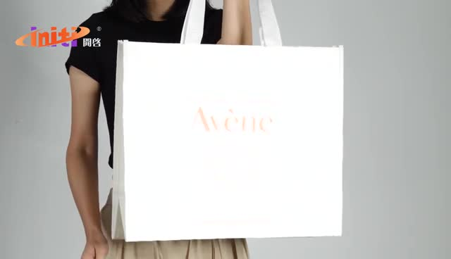 Hot Products Factory Price PP Woven Shopping Bag