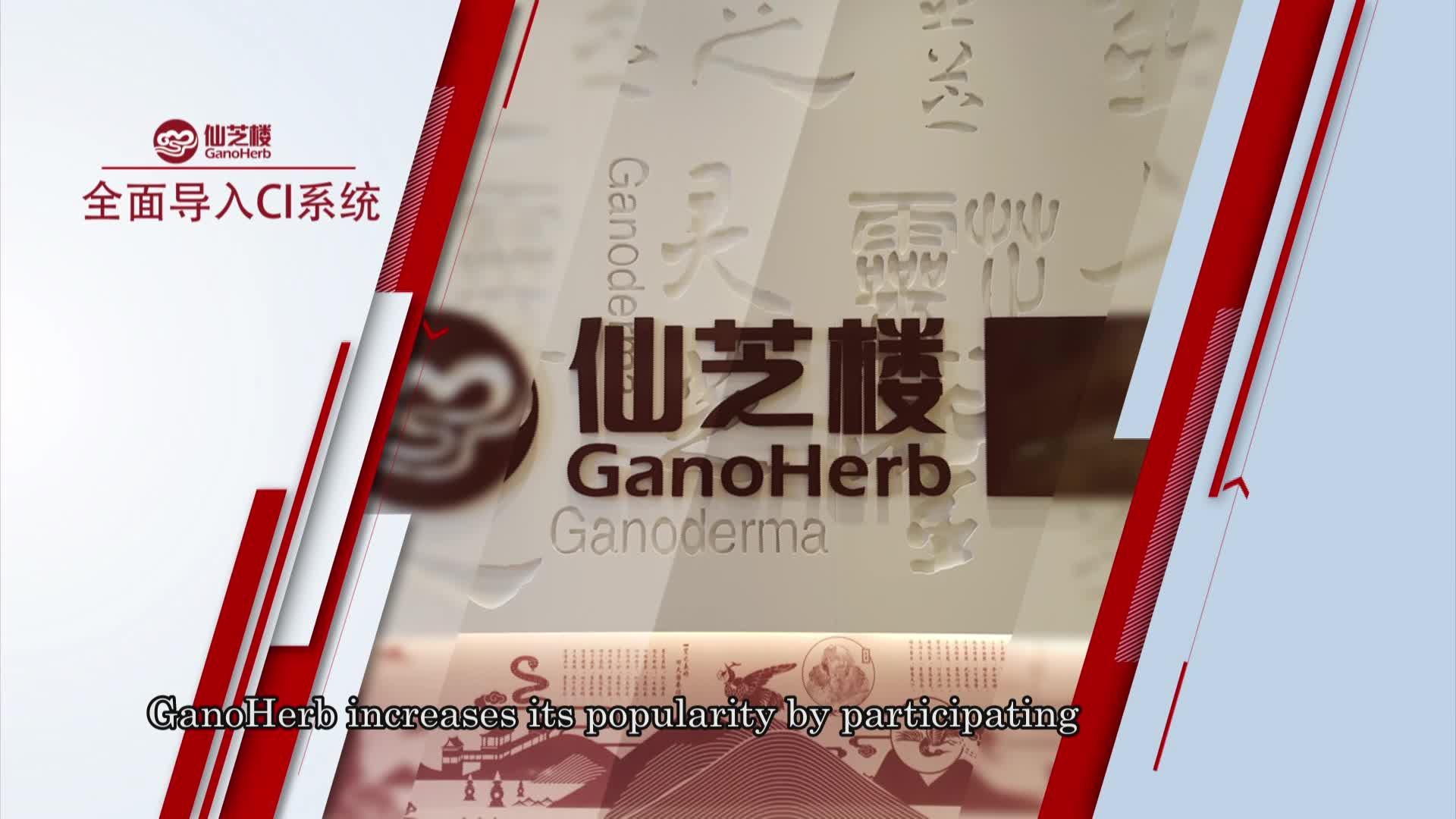 Organic Ganoderma Extra Capsule Chinese Herb Pills with Reishi Mushroom Lingzhi Extract