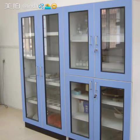 Lab Glassware Cabinet/lab Utensil Storage Cabinet/vessel Cupboard