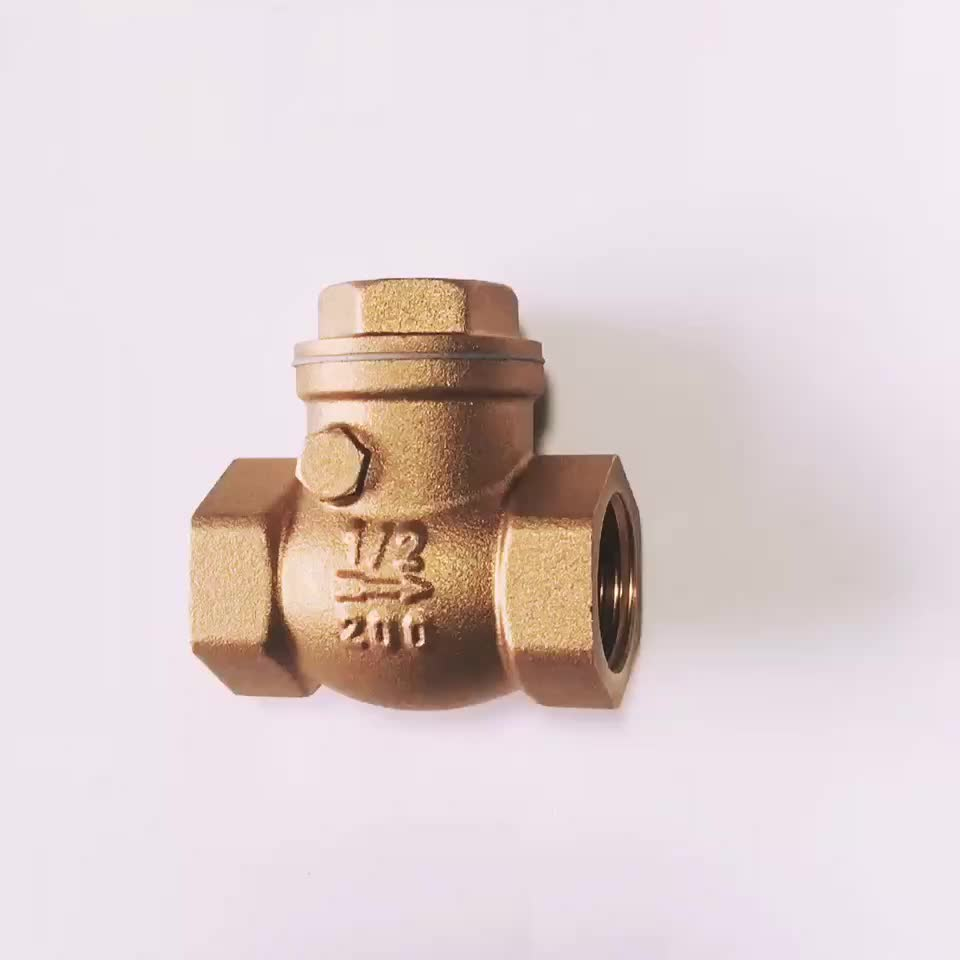 High quality and low price custom OEM ODM brass swing check valve