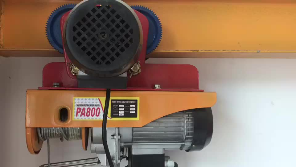 Mini small PA Electric Motor Wire Rope Lift hoist PA200 PA300 PA400 PA500 PA600 PA800 PA1000