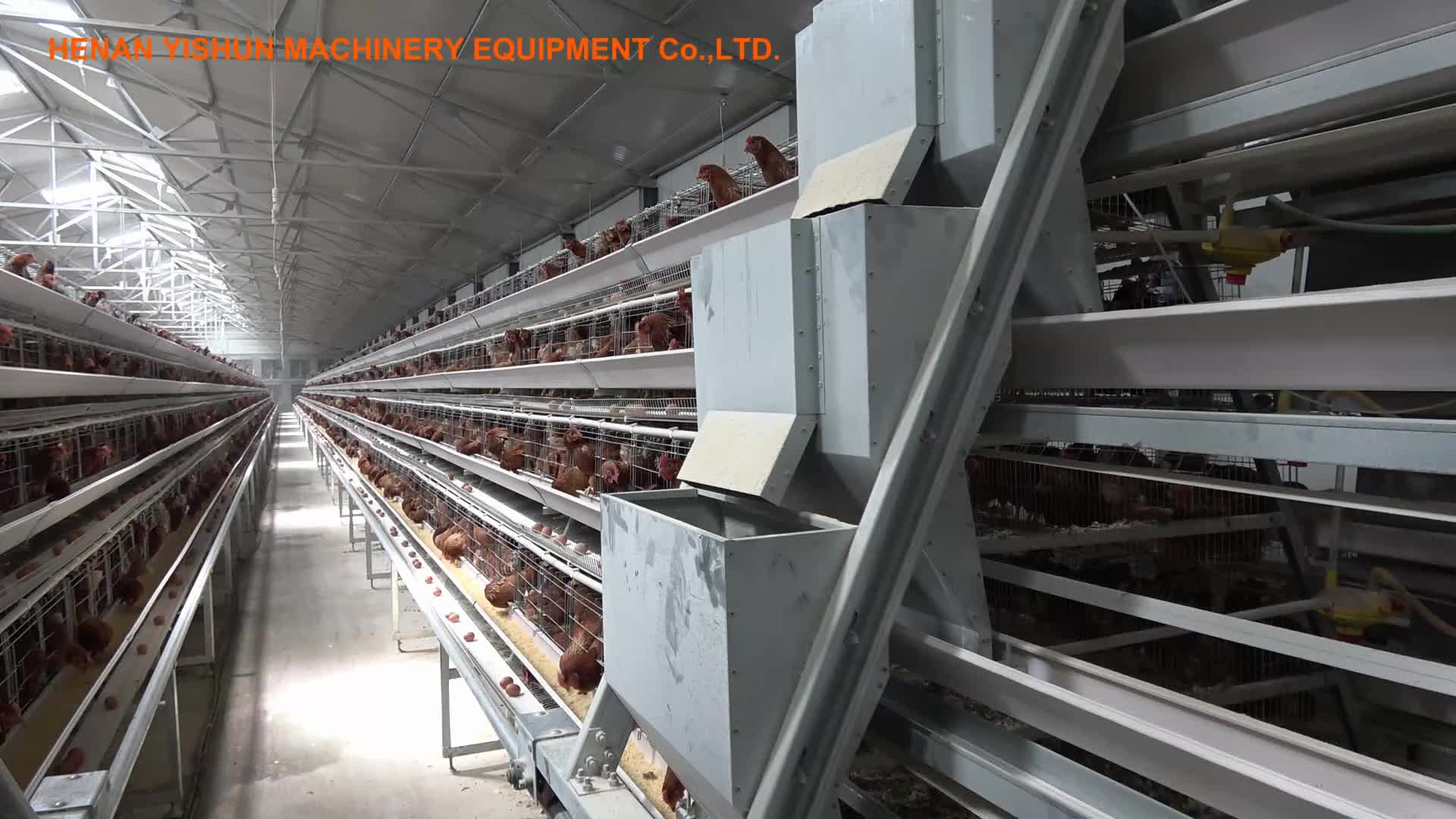 120 Chicken Layers Capacity Battery Chicken Cage for Laying Hens